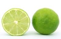le citron de l'openMojito
